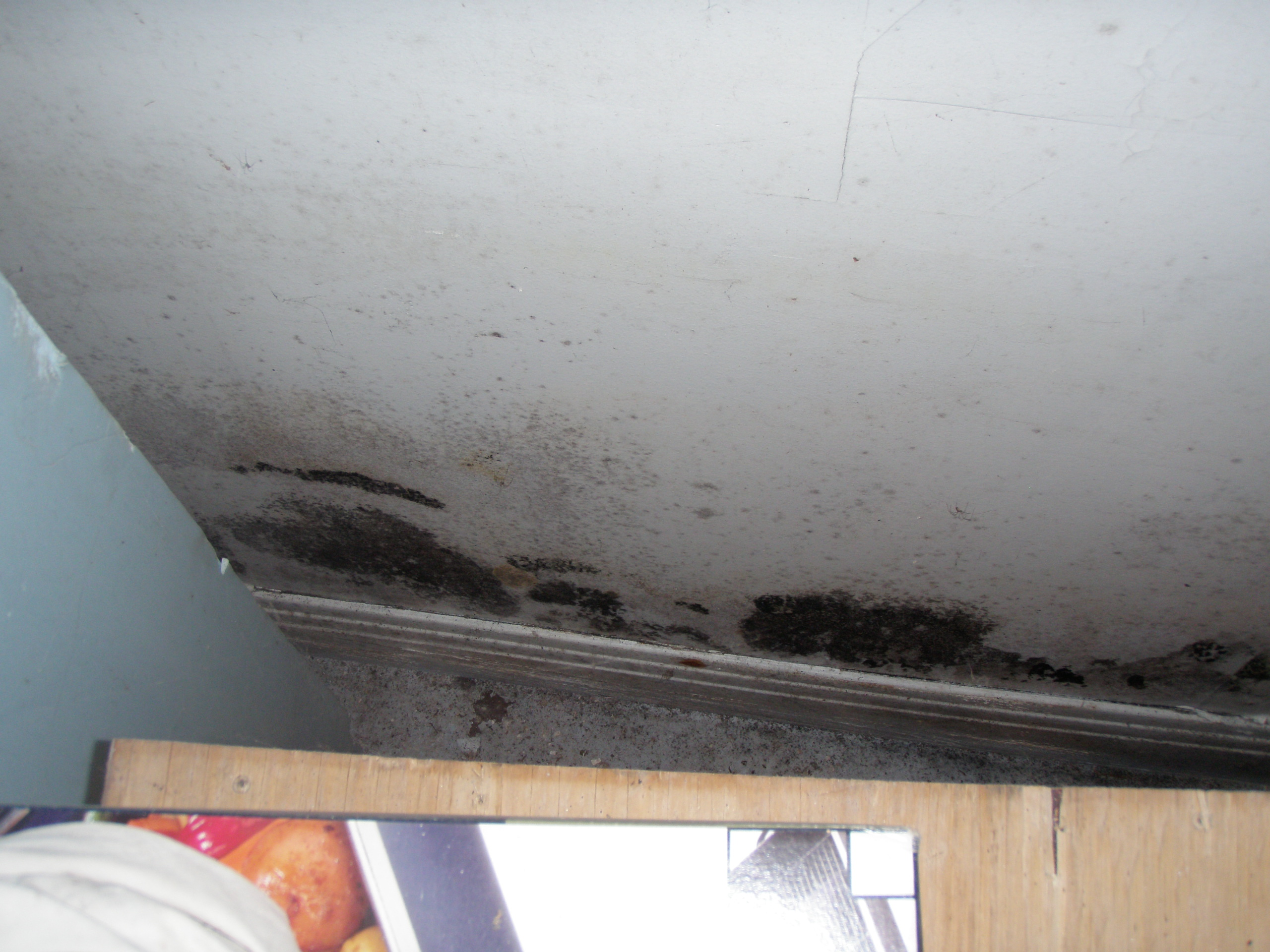 Montreal Home Inspections